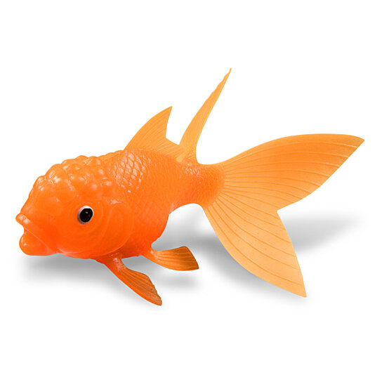 Buy koi toy light up goldfish by 1800 housewares on opensky for Selling koi fish