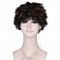 Europe and the United States export wig short curly hair