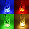 2pcs  LED Decors Light Aquarium Lighting Waterproof RGB Submersible