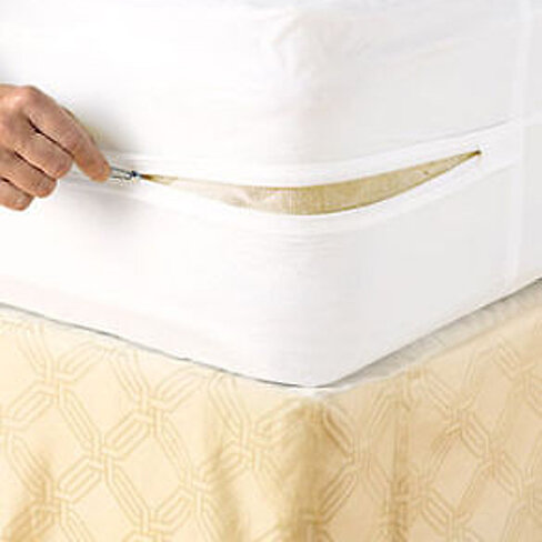 Buy Zippered Mattress Cover Vinyl Bed Bug Proof Water Resistant Protector By Bargain Hunters On