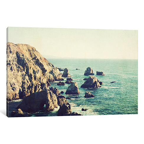 California Beauty by Lupen Grainne Canvas Print