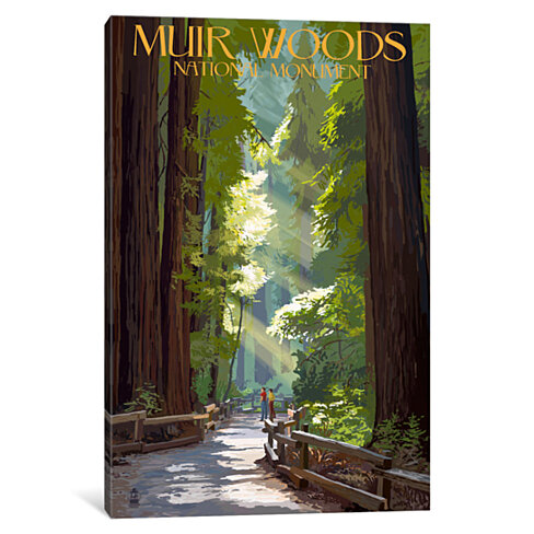 Muir Woods National Monument (Old-Growth Redwoods) by Lantern Press Canvas Print