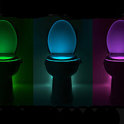 Toilet Motion Light