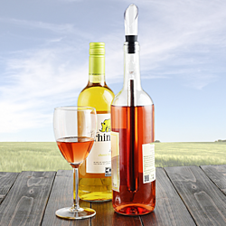 3-in-1 Stainless Steel Wine Chilling Stick