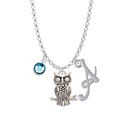 Antiqued Owl - Script Initial and Crystal Charm Necklace