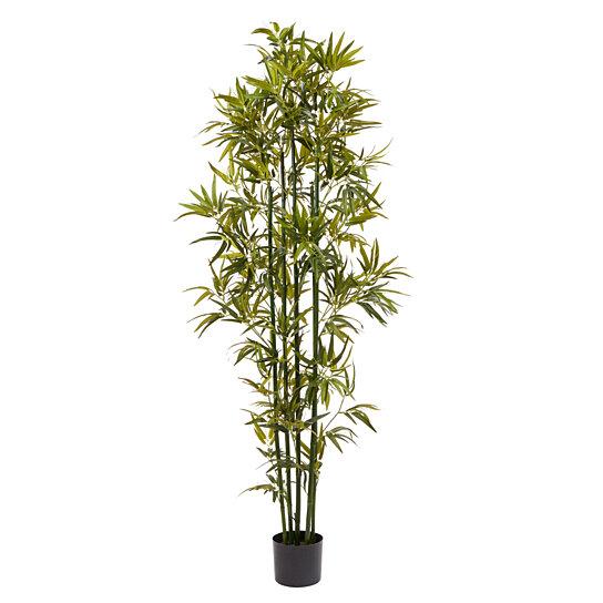 Bamboo Garden Lighting