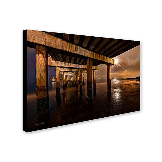 Buy David Ayash Coney Island Brooklyn Ny Ii Canvas