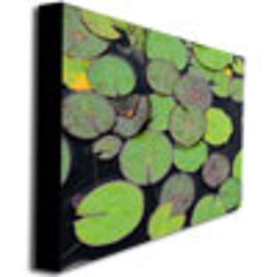 Frog Pond Rug: Buy Kathie McCurdy, 'Frog In The Lily Pond' Canvas Wall