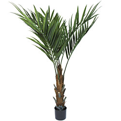 60 Inch Kentia Palm Tree Indoor Outdoor Potted Plant Garden Patio Home Decor