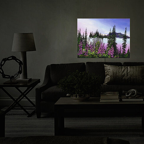 Buy Illuminated Wall Art By Dianoche Designs Canadian Sunrise Nightlight David Glover By
