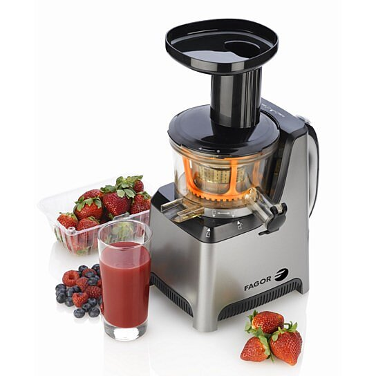 Best Slow Juicers In Usa : Buy Platino Slow Juicer by FAGOR on OpenSky