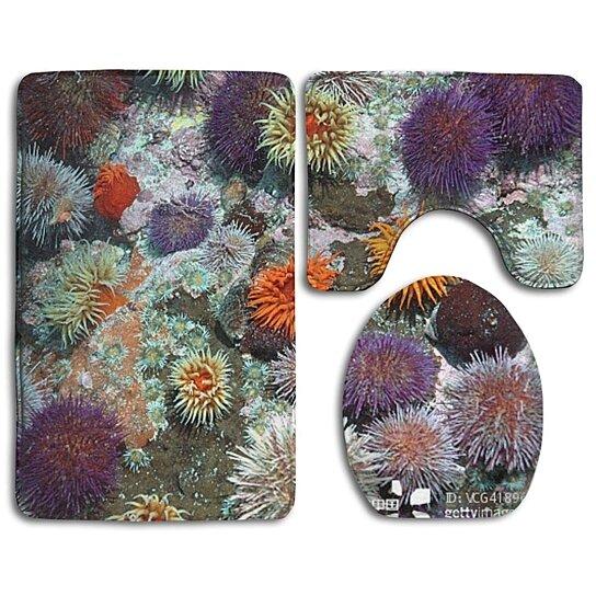 Buy Colourful Sea Urchins Cover Rocks 3 Piece Bathroom ...