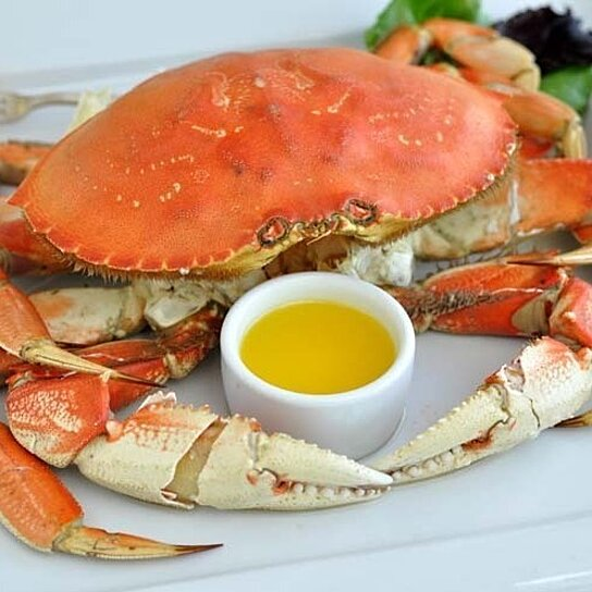 Buy 5 cooked dungeness crabs ships overnight by giovanni for Giovanni s fish market