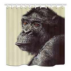 Animal The Of An Orangutan Bathroom Shower Curtain 66x72 inch