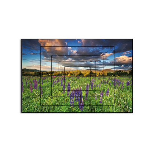"Lupine Sunset by Katherine Gendreau, 15"" x 10"" Five-Panel Artwork Print on Wood"