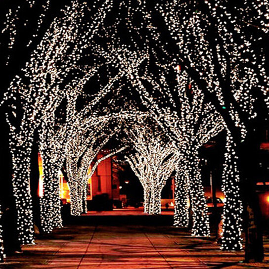 fairy lighting. buy 100 led solarpowered 50ft string fairy lights 1 2 and 3 pack by hiline products on opensky lighting