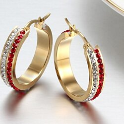 Stainless Steel  Crystal Studded Earrings