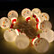 10 LED Outdoor String Light Garden Christmas Snow Head Party Fairy Lamp  lightfan 729