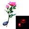 2 Head Solar LED Decorative Outdoor Lawn Lamp 2 Head Sun Rose Light lightfan 428