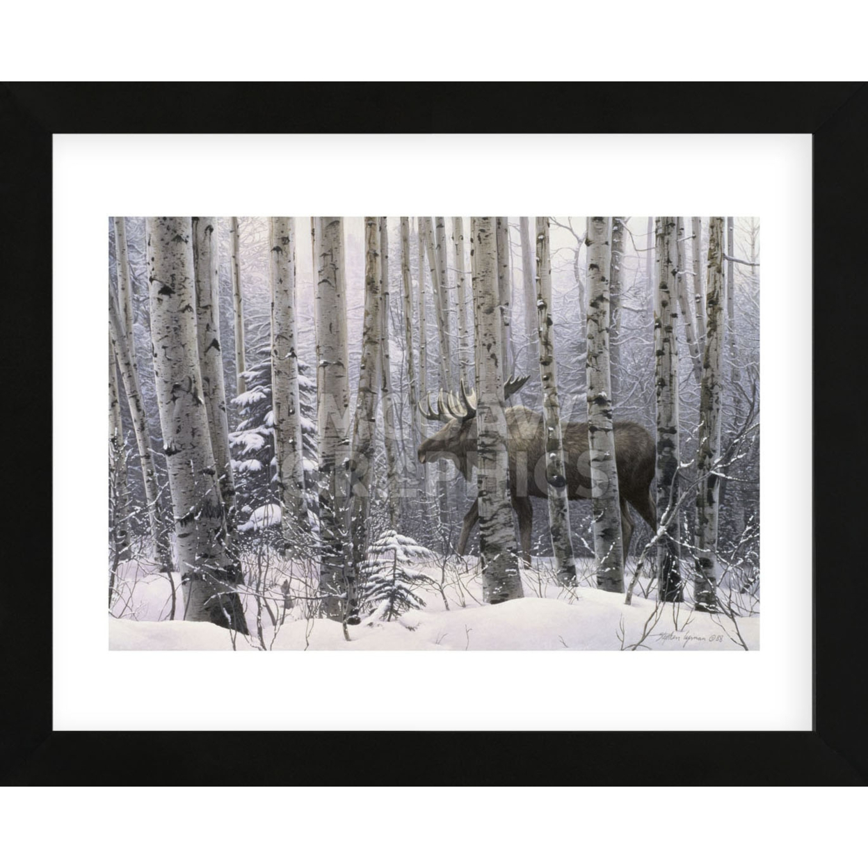 A Walk in the Woods (Framed) 59482207c98fc473ef4e85a6