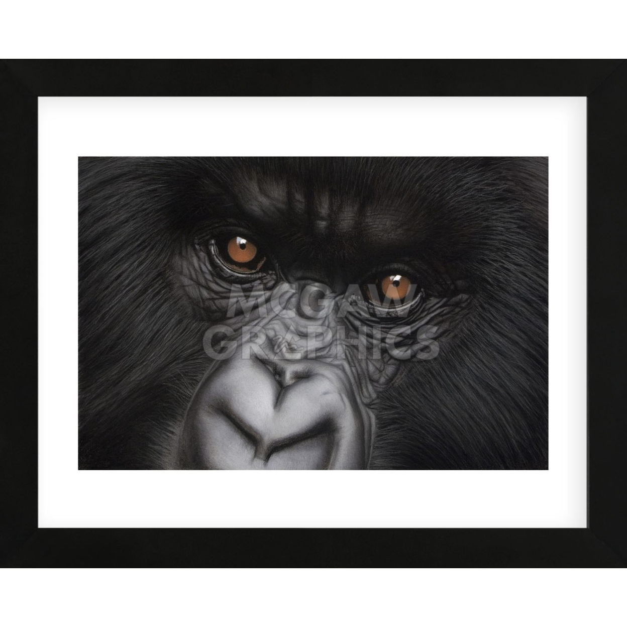 Eyes of Virunga: Mountain Gorilla (Framed) 5948229ec98fc473ef4eab47