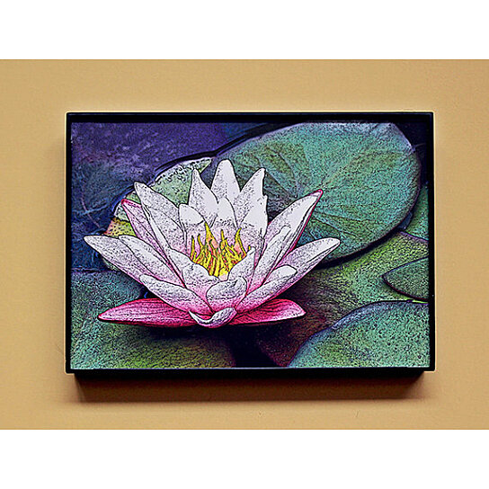 Classy Office Wall Decor : Buy quot framed print pink lotus water lily digital