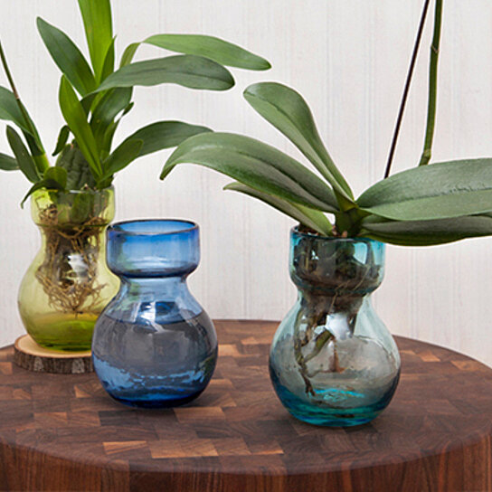Buy Recycled Glass Bulb Vases By Opensky Design Discoveries On Opensky