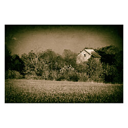 Abandoned Barn In The Trees Vintage Landscape Photography Wall Art Print (Unframed)
