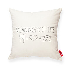 """Meaning Of Life"" Decorative Throw Pillow"