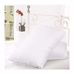 Set of 2 Perfectly Plumped Feather & Goose Down Pillows with 100% Cotton Shells