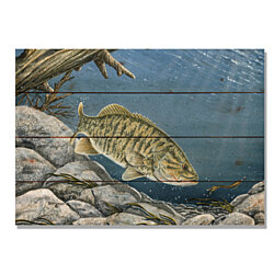 Bartholet's Smallie, Fish Watercolor Print on Wood, Fishing Wall Hanging Home Decor (DBSM)