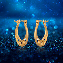 Gold Plated Gold Hoop Earrings