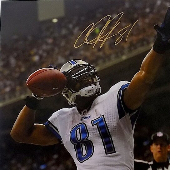 buy calvin johnson detroit lions signed 16x20 photo si by