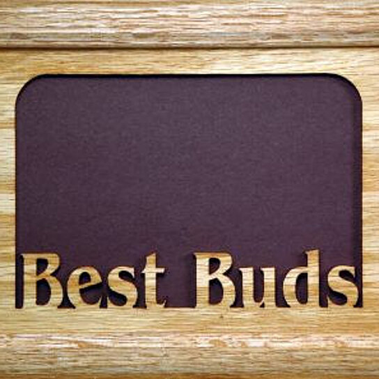 Best Buds Picture Frame 5x7 By Northland Frames And Gifts Inc On Opensky