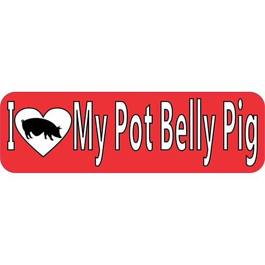 Buy 10 x 3 i love my pot belly pig bumper sticker decal for 10 x 40 window