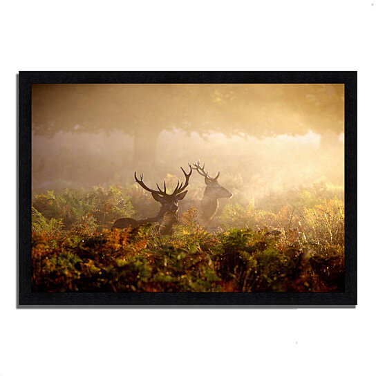 buy two stags at dawn 39 x 27 framed photograph print black frame by tangletown fine art on. Black Bedroom Furniture Sets. Home Design Ideas