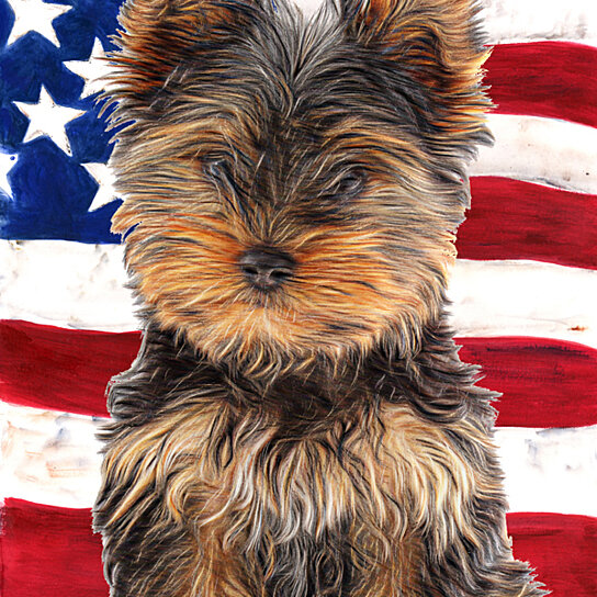 Fitness Equipment Yorkshire: Buy USA American Flag With Yorkie Puppy / Yorkshire