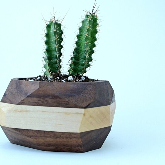 Buy Geometric Wooden Planter Free Shipping Unique Wood Cactus
