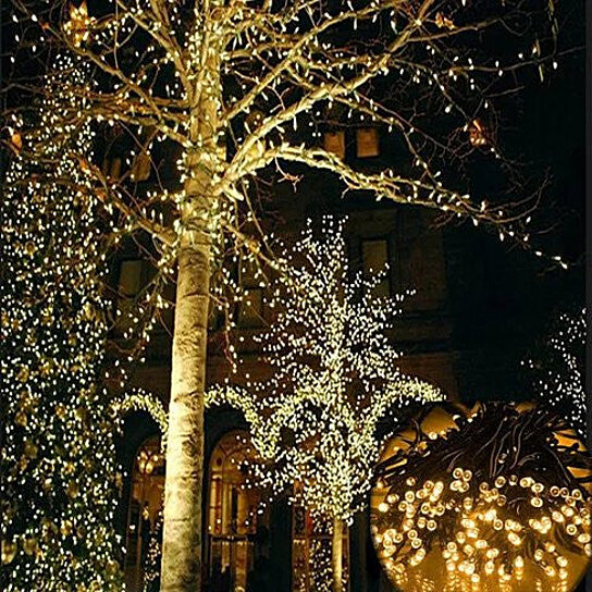 Christmas Lights Shop In Adelaide: Buy Firefly Solar Mini LED Outdoor Christmas Lights By
