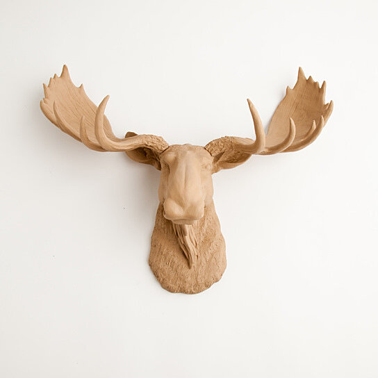 buy the agatha tan moose head by white faux taxidermy on opensky. Black Bedroom Furniture Sets. Home Design Ideas