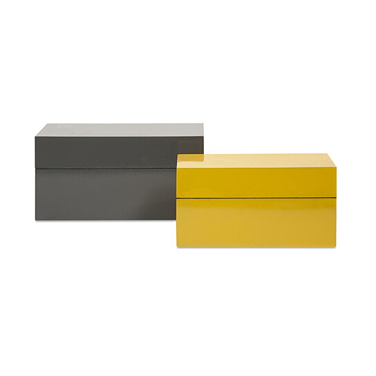 Watson Set Of Two Lacquer Storage Boxes In Yellow And Silver Black Color