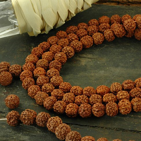 Buy shiva tears 10mm rudraksha beads 108 beads for Natural seeds for jewelry making