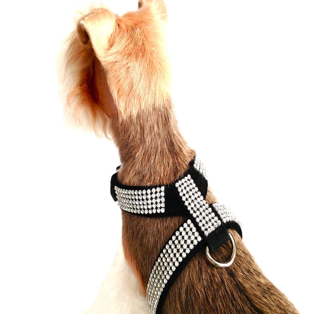 Velvet Crystal Dog Harness *sale* - Black, XS 5712c47a4f3d6f42658b4a9d