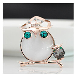 Owl Scarf Ring Clip or Brooch for Woman